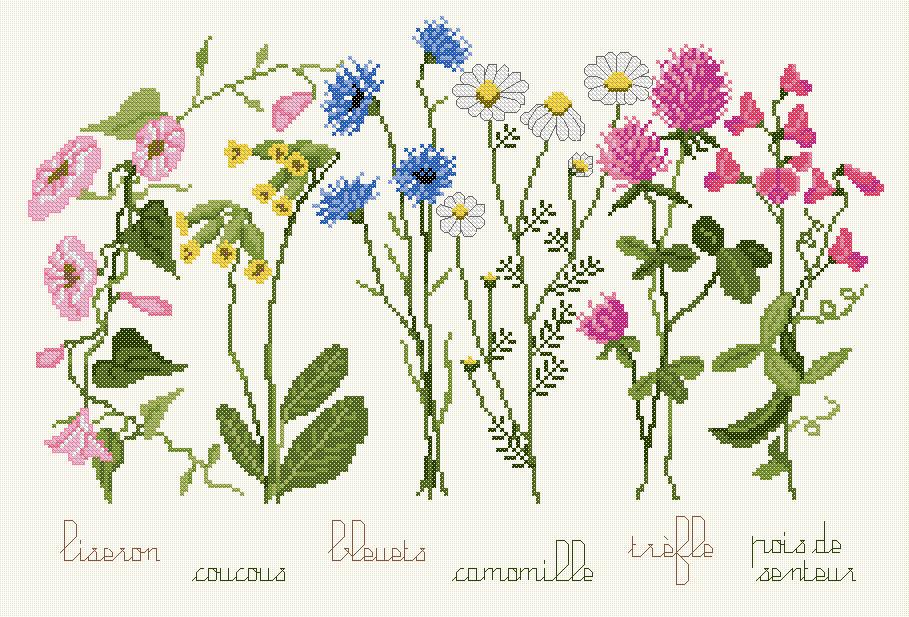 Kit point de croix - Mon Herbier - Ets Anne Loison